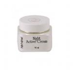 Night Active Cream ночной активный крем для сухой и нормальной кожи  250 мл