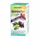 Экстракт черной бузины с цинком, пробиотиком и витамином C для детей Floris Sambuflor Kids 50 жевательных желе